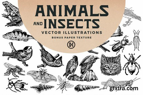 Animals and Insects Vectors