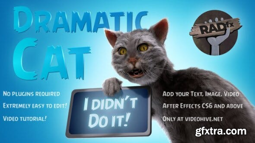 Videohive Funny Dramatic Cat 25771871