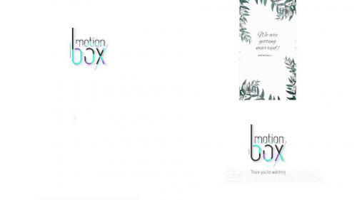 White Floral Wedding Invitation - 14259073