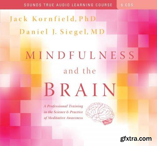Mindfulness and the Brain: A Professional Training in the Science and Practice of Meditative Awareness (Audiobook)