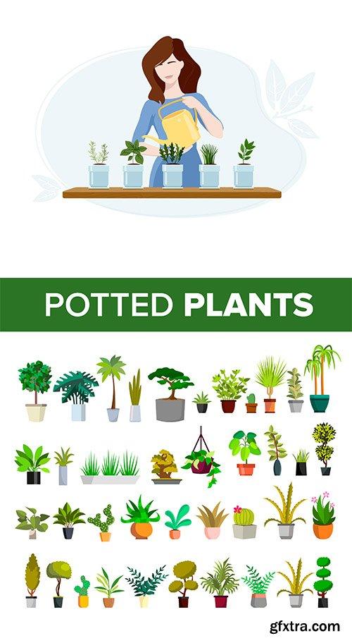 Floral Green Home Decorative Houseplant Set