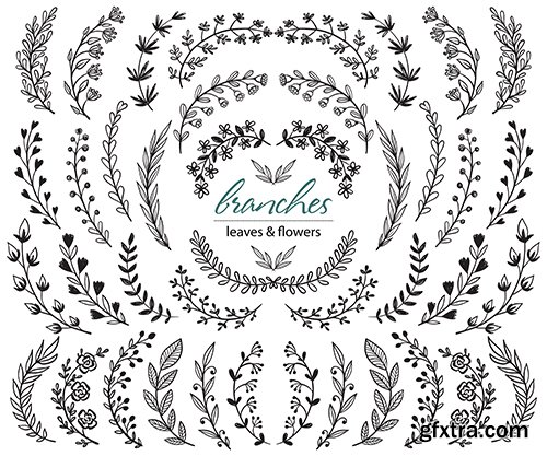 Set of Hand-Drawn Plants Branches with Leaves and Flowers