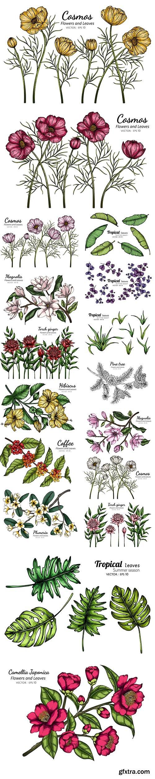 Flower Leaf Drawing Illustration Set