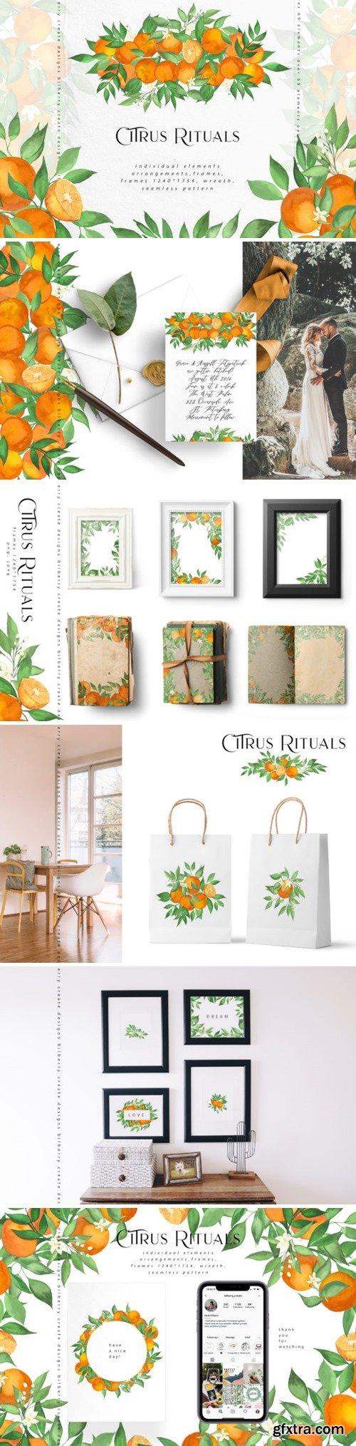 Citrus Rituals 3680949
