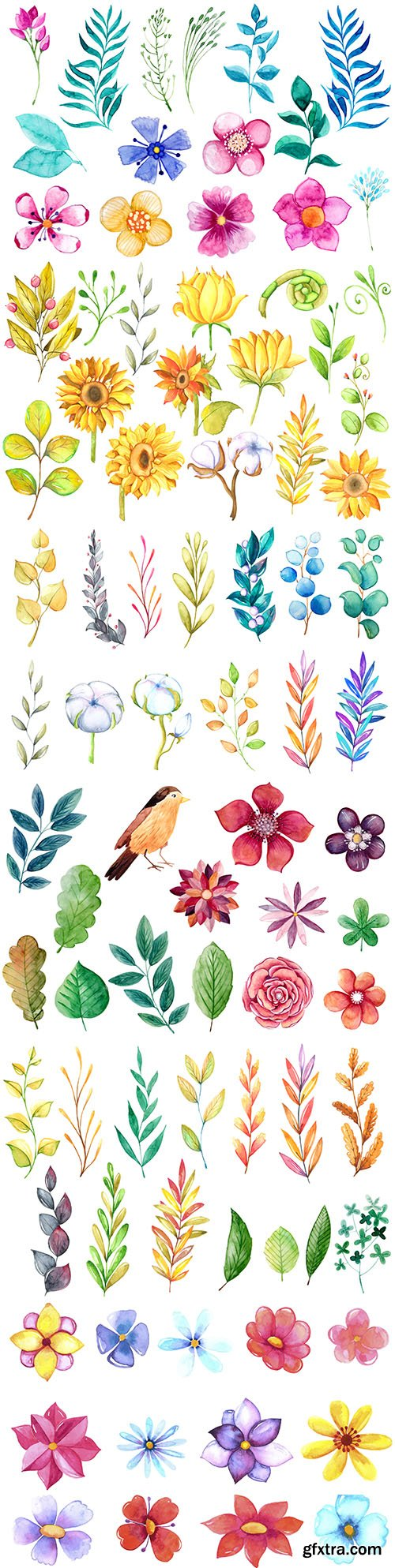 Watercolour collection flowers, leaves and branches