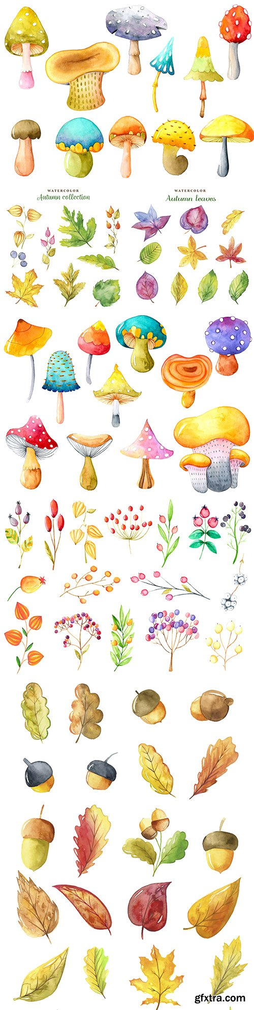 Mushrooms and autumn leaves collection watercolors
