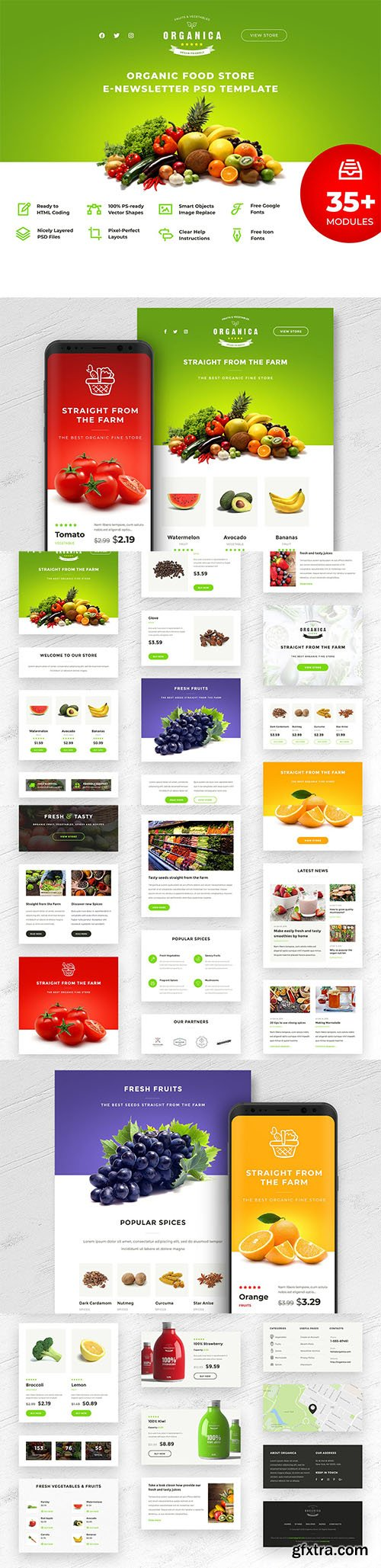 Organica - Food Store E-newsletter PSD Template