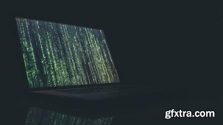 Web Security and Hacking for Beginners