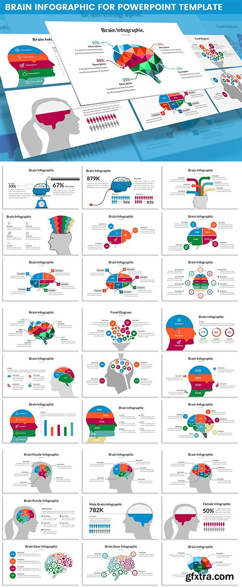Brain Infographic for Powerpoint