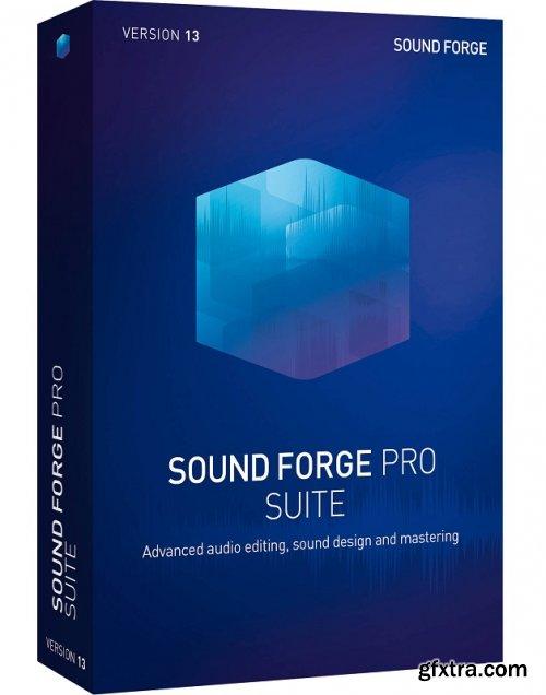 MAGIX SOUND FORGE Pro Suite 14.0.0.33 (x64) Portable