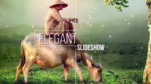 Easy elegant slideshow - 10681636