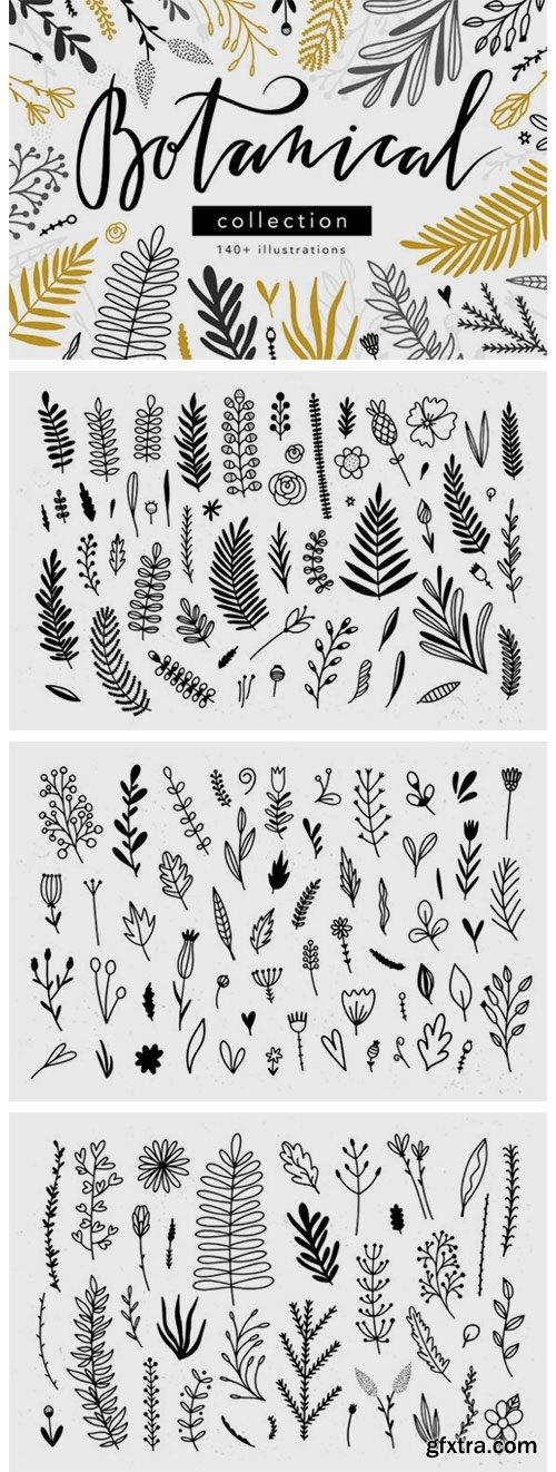 Botanical Collection 3769902