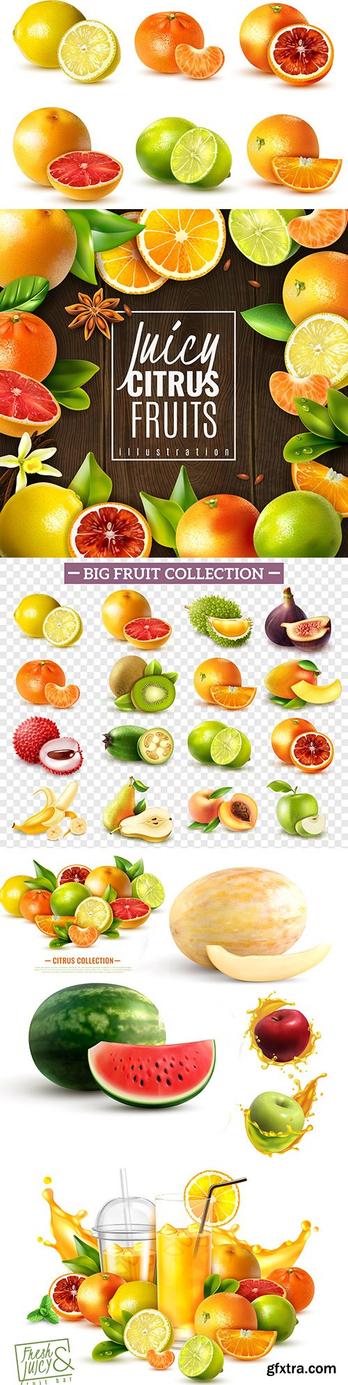 Ripe and fresh fruit a realistic set whole and sliced