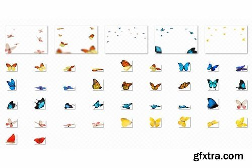 Bellevue - Butterfly Overlays