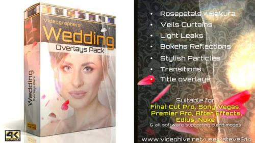 Videohive - Wedding Overlays Pack - 21713069