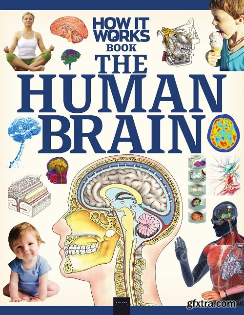 How It Works - Book The Human Brain 2020