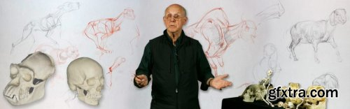 Animal Drawing Part 1: Introduction to Animal Drawing with Glenn Vilppu