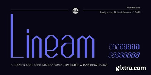 Lineam Font Family - 16 Fonts