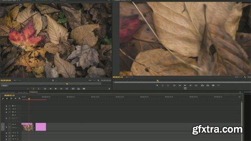 KelbyOne - Premiere CC Beyond the Basics