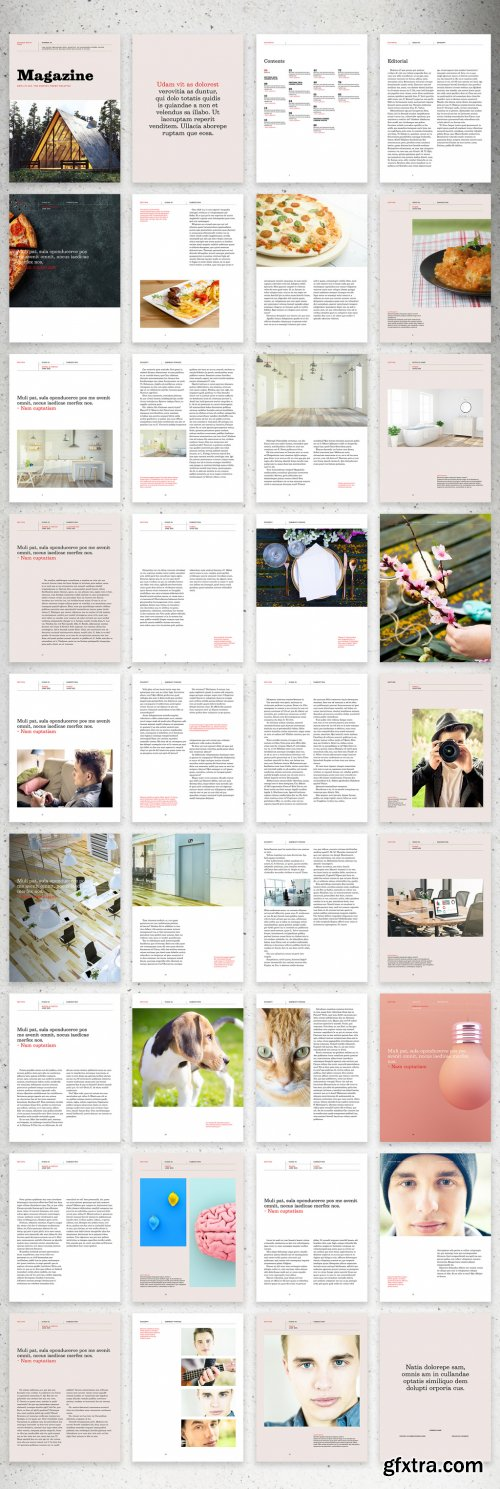 Creative Modern Digital Lifestyle Magazine Layout with Orange Accents 350983680