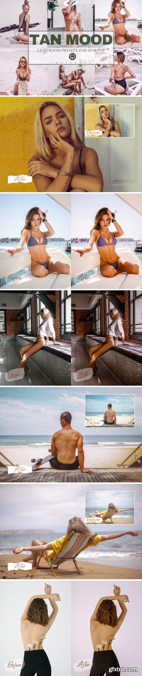9 Tan Mood Lightroom Presets 4264670