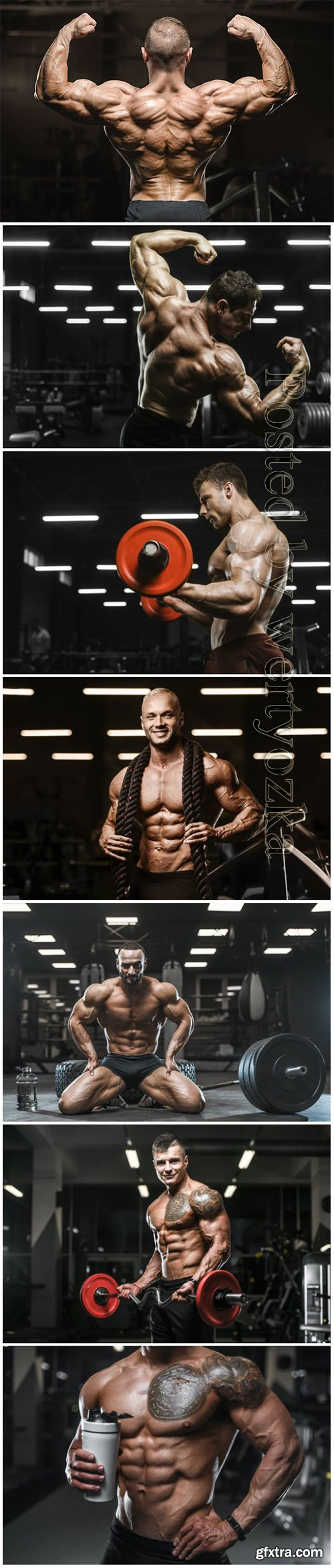 Handsome strong men in the gym