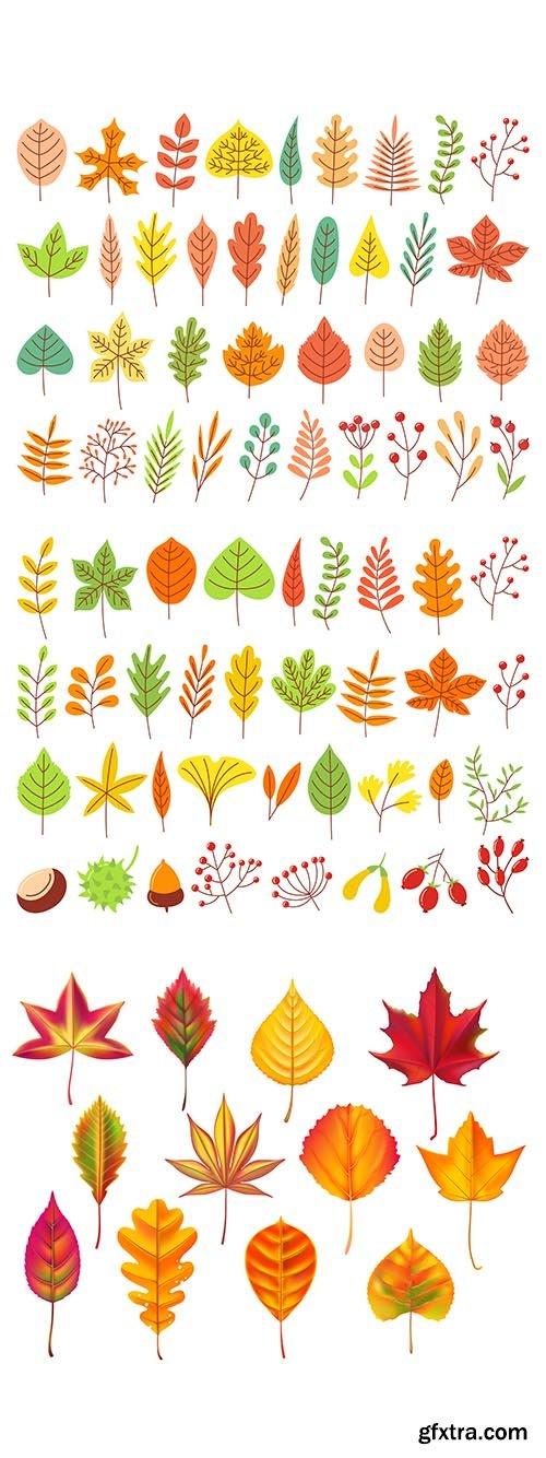 Yellow autumnal garden leaf