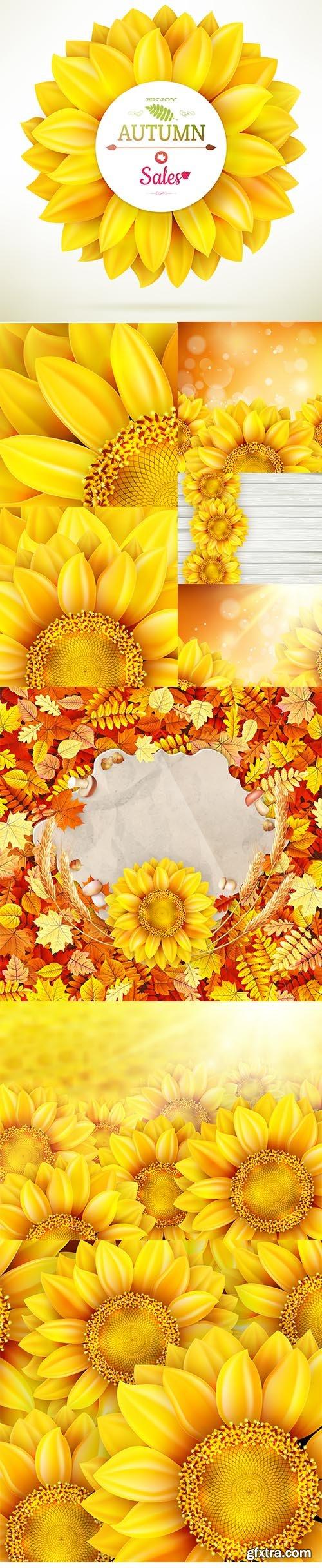 Sunflower High Quality Illustration