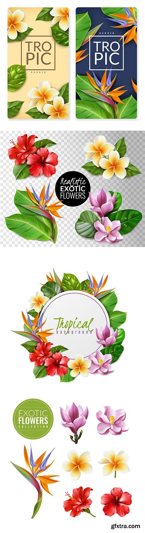 Realistic Exotic Flowers Illustration