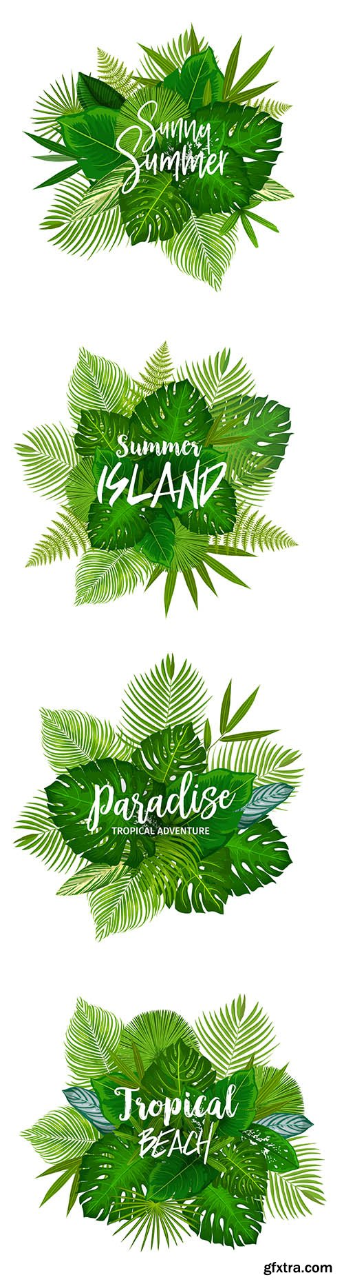 Summer Tropical Palm Exotic Tree Leaves