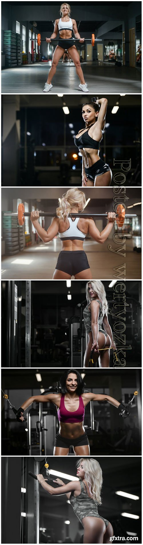 Girls in the gym, beauty and health