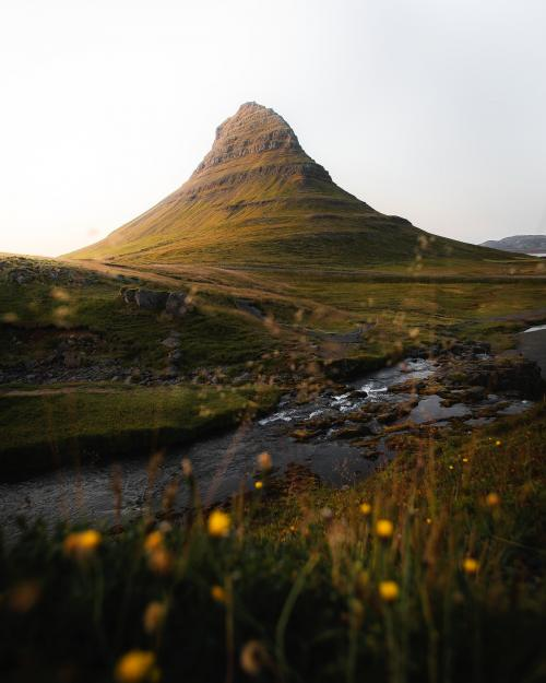 Green field by Church Mountain, Iceland - 1234805