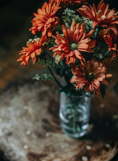 Gerbera daisy bouquet in a vase - 844793