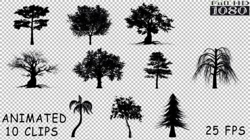 Videohive - Silhouette Trees Pack