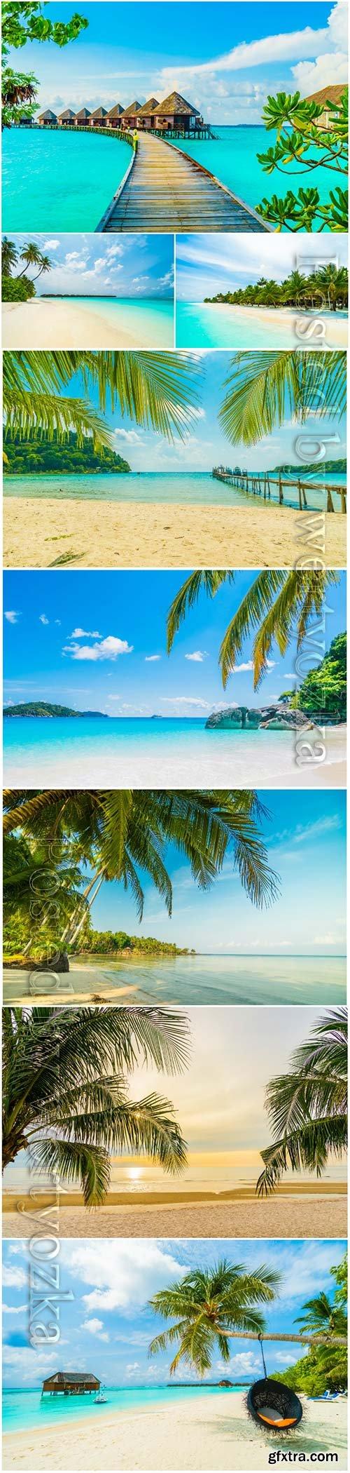 Beautiful tropical beach sea with  palm tree paradise island