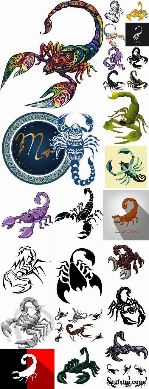 Scorpion sting venom arthropod chitin armor carapace vector image 25 EPS