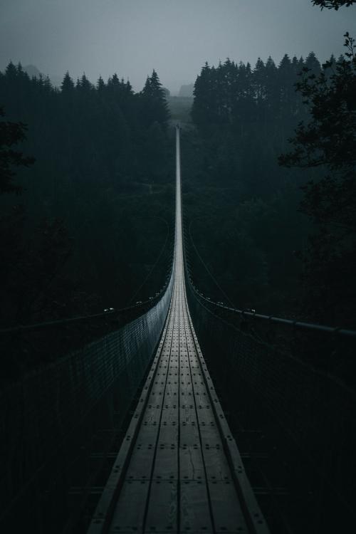 Geierlay Suspension Bridge in Hunsruck, Germany - 1017142