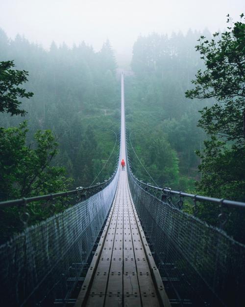 Geierlay Suspension Bridge in Hunsruck, Germany - 1017148