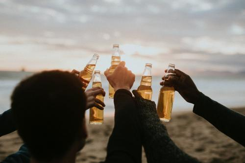 Happy friends toasting at the beach - 1079949