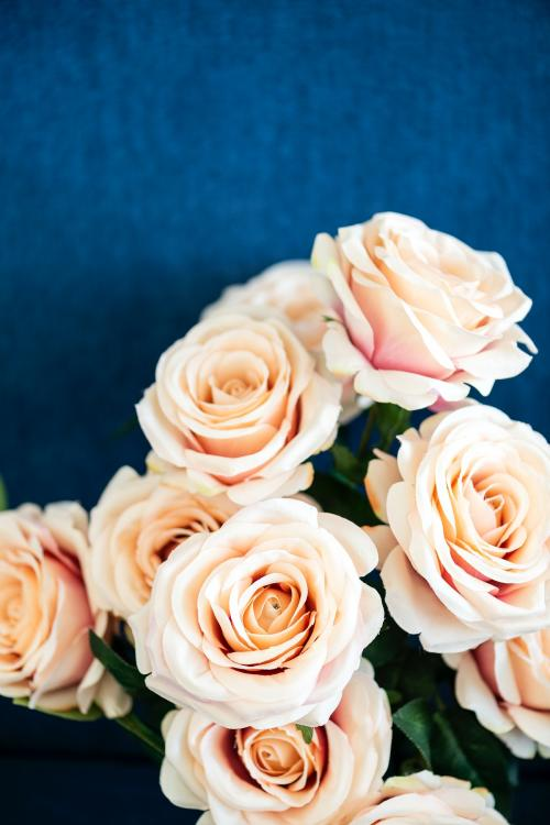 A bouquet of light orange roses background - 1204294