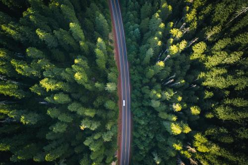 Aerial view of a road through the woods - 1204747