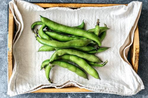 Fresh organic broad beans in a wooden box aerial view - 1204784