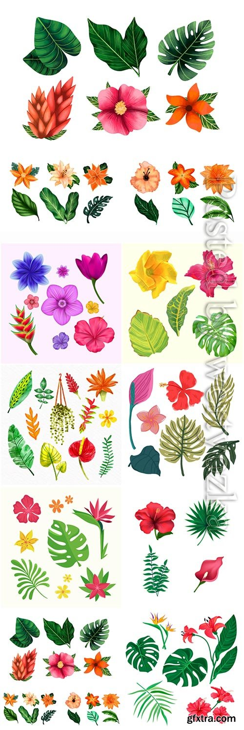 Tropical flowers and leaves, vector illustration