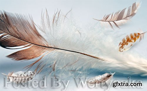 3D psd models fresh modern minimalist flowing feather tv background wall
