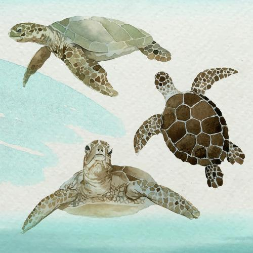 Watercolor painted sea turtle in watercolor banner vector - 2097694