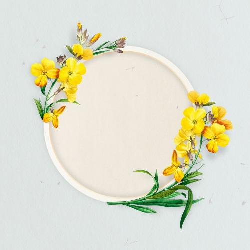 Blank round wallflower frame social ads template - 2090589
