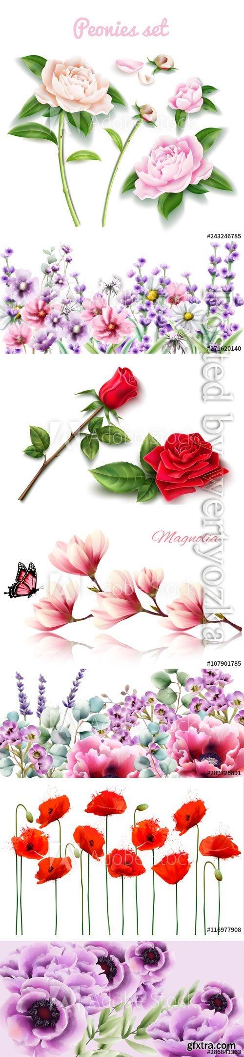 Beautiful flowers vector illustrations