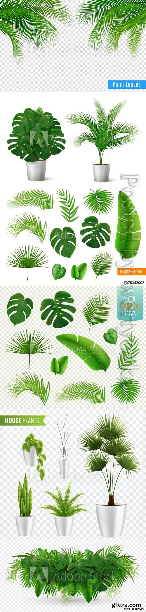 Tropical leaves realistic composition vector illustrations