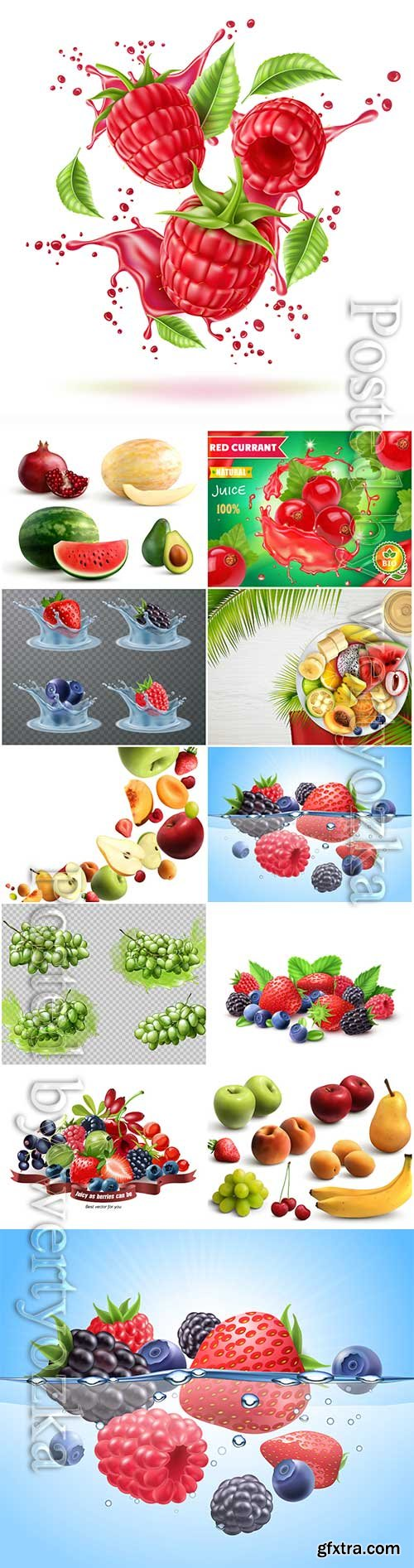 Vector fresh berries and fruits