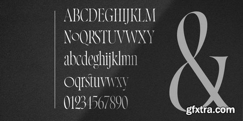 Norman Font Family